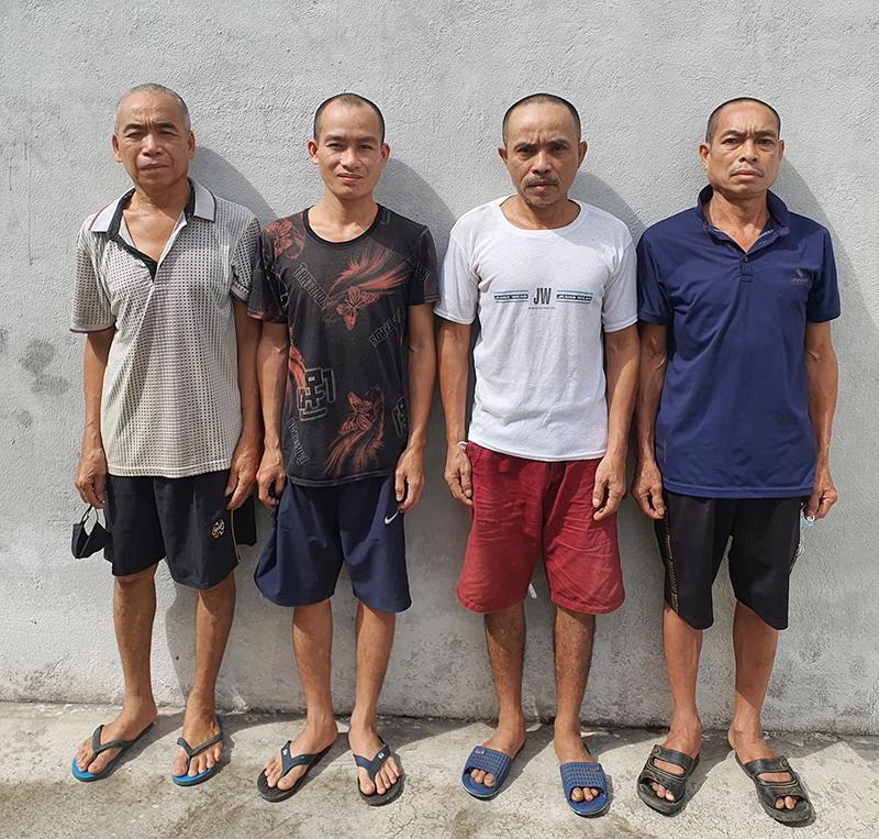 Công an huyện Con Cuông bắt nhóm đạo chích trâu bò