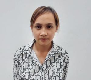 Vụ án trộm cắp tài sản tại Anh Sơn